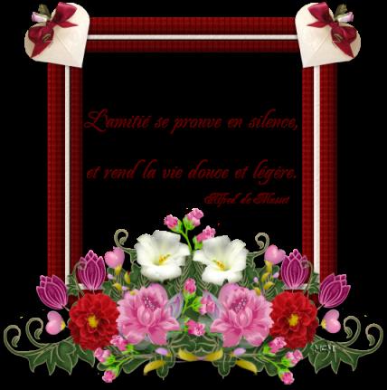 Rencontre et amitie tarnos