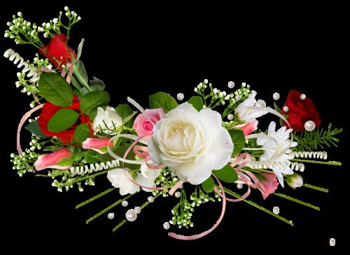 Pershendetje me nje lule per nje anëtarë? - Faqe 8 36c4cd2c