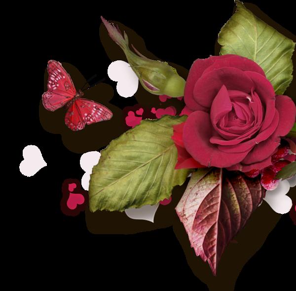 Pershendetje me nje lule per nje anëtarë? - Faqe 8 432d618f