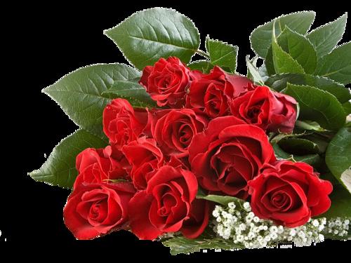 """Résultat de recherche d'images pour """"gifs fleurs roses"""""""