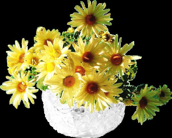 Bouquet de fleurs page 9 for Bouquet de fleurs jaunes