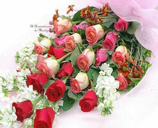 Bouquet de fleurs page 7 for Beau bouquet de fleurs