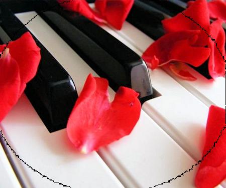 Pianos C5023e85