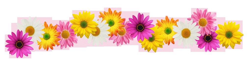 Résultat d'images pour gifs fleurs de pâques