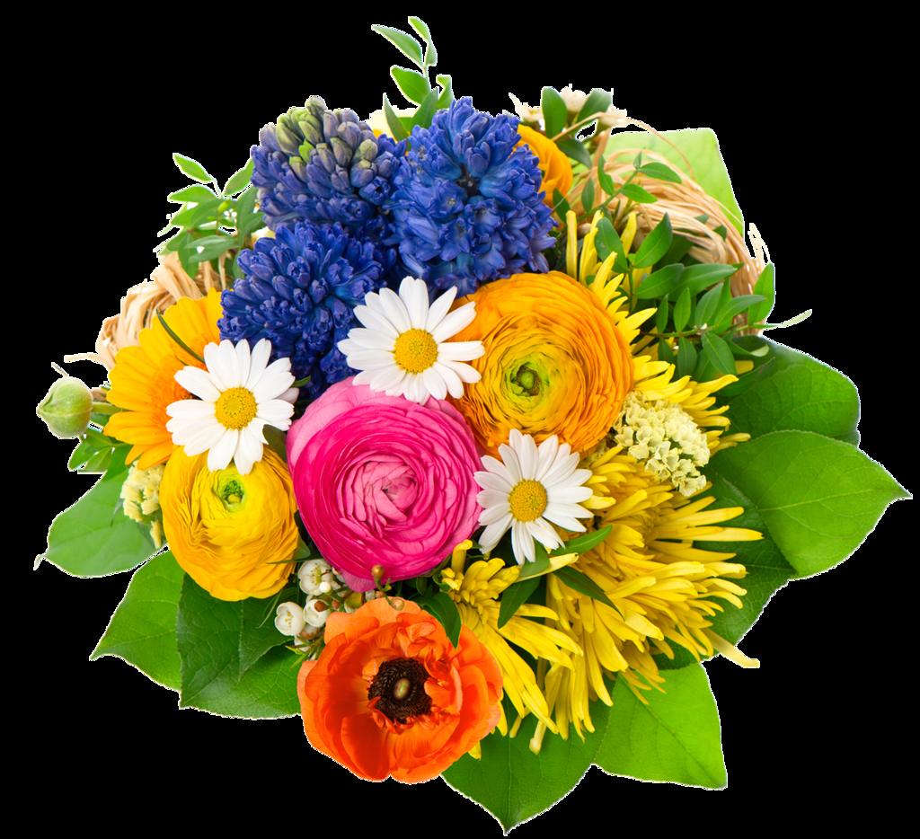 Bouquet de fleurs page 10 for Bouquet de fleurs 7 lettres