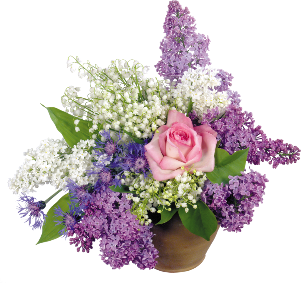 Résultat d'images pour Gifs lilas (fleurs)