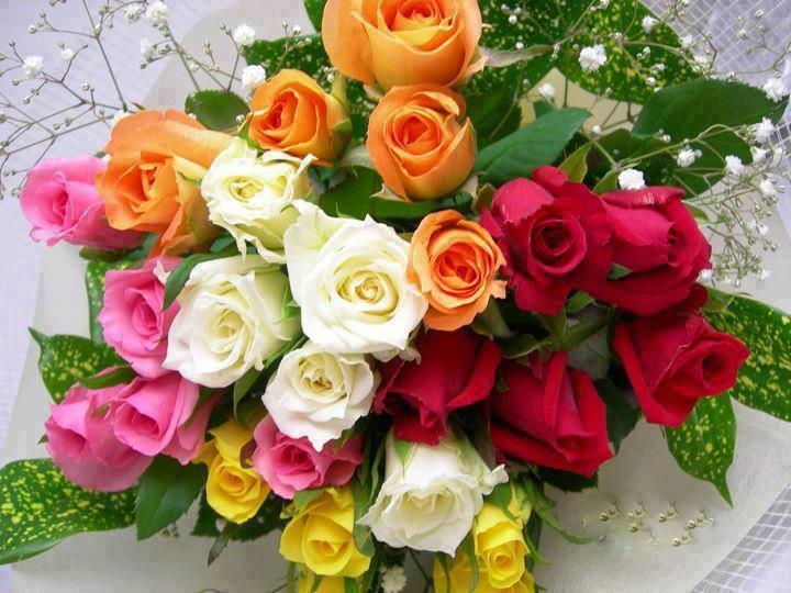Résultat d'images pour Joli bouquet de roses bleues